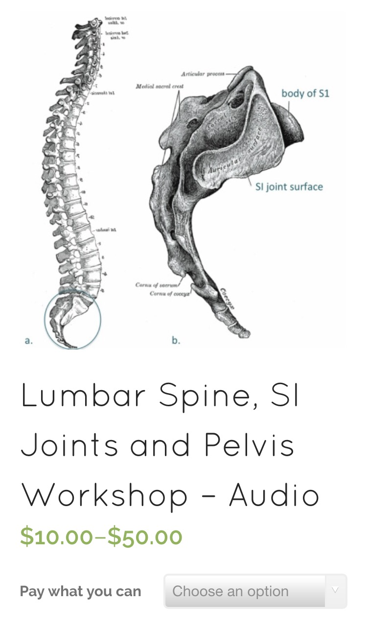 Anatomy and Yoga Therapeutics workshop on spine, sacroiliac joints and the pelvis